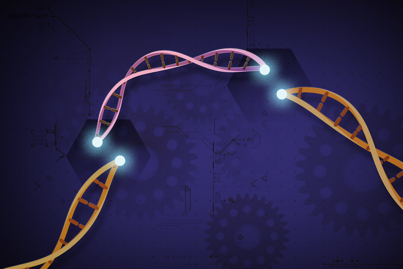 The Swiss Army Knife of Gene Editing Gets New Control